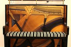 pianot0022