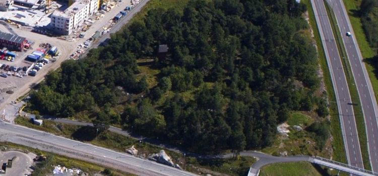 Franstorps verkstäder hjälper till att planera en park.